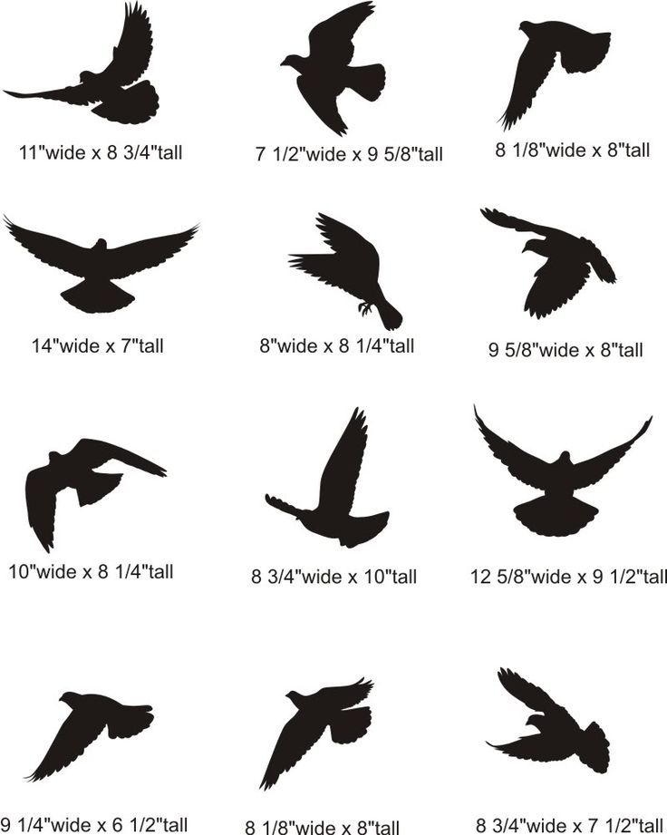 Body Tattoos Silhouette Of Two Birds Flying Google Search